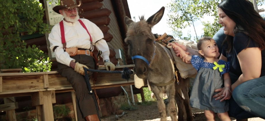 Old Miner and Donkey